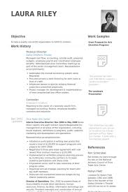 Executive Director Resume Template Resume Examples Template Finance Director Of In 17 Excellent