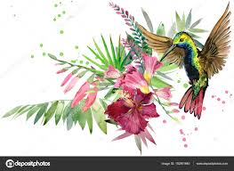 beautiful tropical nature exotic floral paradise background