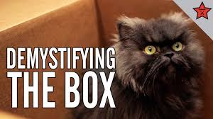 Colonel Meow Memes - colonel meow s diaries demystifying the box youtube