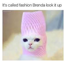 Fantastic Memes - fantastic memes to kick start your day owless