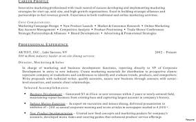 resume exles objective sales revenue equation cost sle template of an excellent experienced chartered accountant