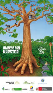 amazon biodiversity plan for the andean community biocan