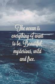 best 25 beach ocean quotes ideas on pinterest beach quotes sea