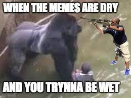 Yeet Meme - yeet imgflip