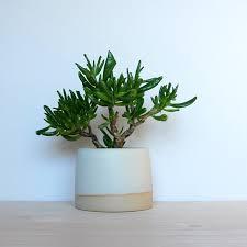 planters awesome modern planter pots modern planter pots modern