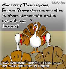turkey the back pew