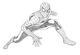 drawn spider man sketch pencil color drawn spider man sketch