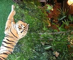 jungle theme decorations theme set design and decorations for party or event