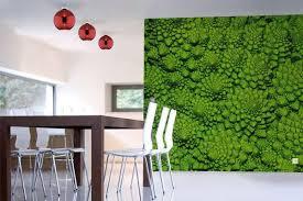 papier peint de cuisine papier peint cuisine brocolis izoa