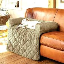 Leather Sofa And Dogs Leather Sofa Cover For Dogs Ezhandui