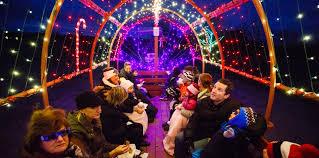 musical light show hayride