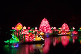Stoneham Zoo Lights brand new u0027wild lights u0027 night time attraction opens in dublin zoo