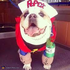 English Bulldog Halloween Costumes Popeye Costume Diy Halloween Halloween Costumes Costumes