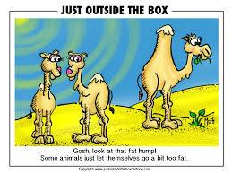 image result for camel cartoons tickled pink animal hut
