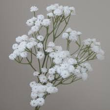 Bulk Baby S Breath Artificial Baby U0027s Breath Gypsophila