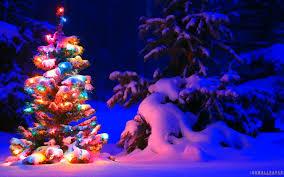 christmas tree lights snow u2013 happy holidays