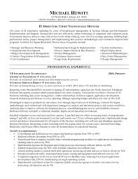 cio chief information officer resume