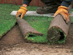 how to install sod how tos diy