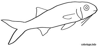 coloriage poisson d avril a colorier dessin