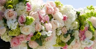 Wholesale Fresh Flowers South Coast Wholesale Flowers