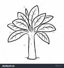 how to draw a banana tree banana tree cartoon vector and