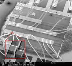 multimedia gallery microscopic image of a photonic integrated
