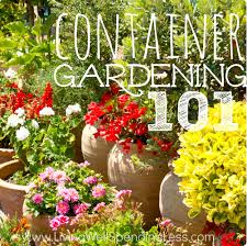 container gardening gardening 101 container gardening container vegetable