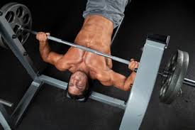 decline barbell press muscle u0026 performance