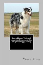 australian shepherd training tips australian shepherd training tips for australian shepherd dog