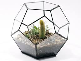 large glass terrarium ornaments wholesale large glass