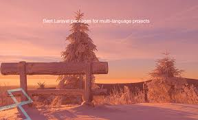 best laravel packages for multi language projects learning laravel