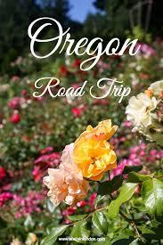 Oregon travel info images Best 25 willamette valley ideas oregon travel jpg