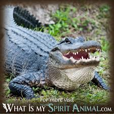 what does dreaming about alligators mean animal dreams