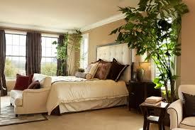 pflanzen für schlafzimmer frische farben fürs schlafzimmer ratgeberbauen24