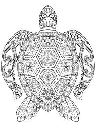 pattern coloring book pages stock vector 326447528 for turtle for