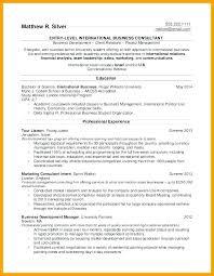 it manager resume senior manager resume management resume sles