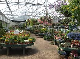 winterberry gardens ct garden center landscape u0026 lawn service