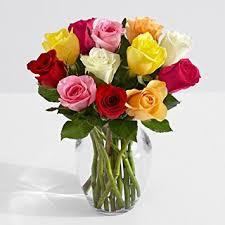 multicolored roses proflowers 12 count multi colored one dozen rainbow