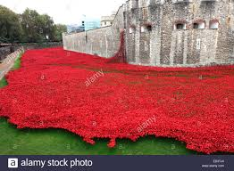 ceramic poppy flowers around the exterior of the tower of london