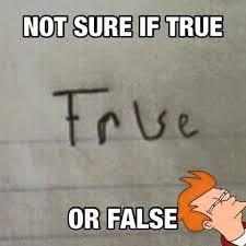 Not Sure Memes - futurama meme not sure true or false on bingememe