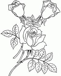 free rose pictures kids coloring