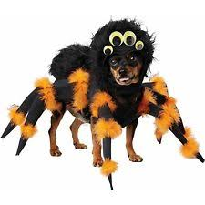 Extra Large Dog Halloween Costumes Costumes Dogs Ebay