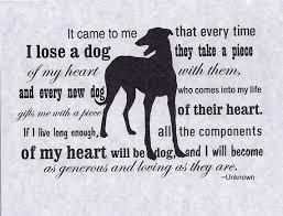 dog condolences greyhound dog sympathy card with envelope heart of a dog