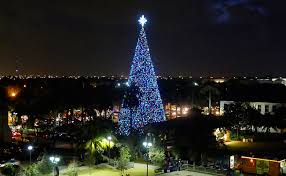 delray 100ft tree events livingfla