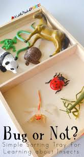preschool lesson plans thanksgiving 435 best homeschool images on pinterest preschool activities