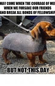 Weiner Dog Meme - 45 funny dog memes dogtime