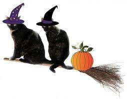 Cat Halloween Costumes Cats Halloween Costumes Cats Conscious Cat