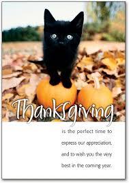 thanksgiving postcards smartpractice veterinary