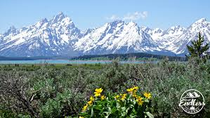 grand teton national park spending the day at grand teton national park our endless journey