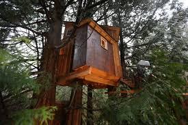 three house nelson treehouse